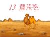 第四单元4.《找骆驼》ppt课件7