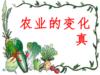 34_农业的变化真大课件.ppt(1)